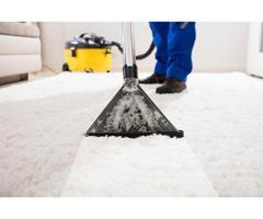 San Antonio Carpet Cleaners   juststeamitcleaners.com