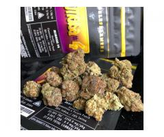 Buy Jungle boys Cali Weed online at darkmarkete.com