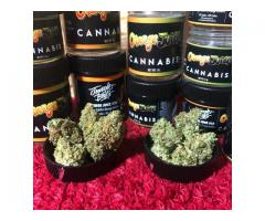 Buy Cannabis Tin Cans at darkmarkete.com