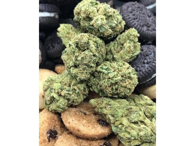 Buy Cookies SF Cali Weed online at darkmarkete.com