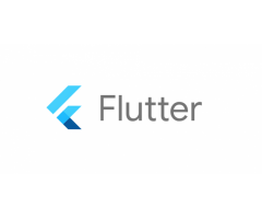 Flutter Development Services India