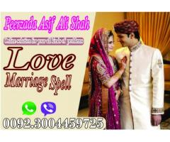 Free Online Love Marriage Astrology Online In Italy.