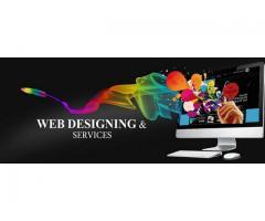 Website Designing Services at Zsdigital