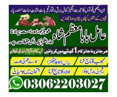 kala jadu specialist amill baba kaly jadu specialist amill baba mozam shah +923062203027