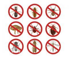 Pest Control Sahebganj Bihar