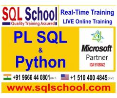 PL SQL Practical Online Training @ SQL School