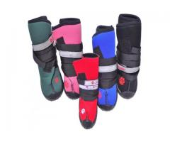 Gift your aged canines with comfortable orthopedic shoes for dogs