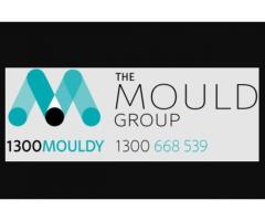 Mould removal Brisbane