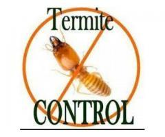 Termite Control Crossings Republik