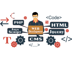 Who Is The Best web development company in India   Web Designing House